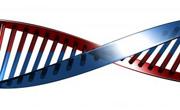 DNK (Foto: Flickr)