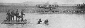 Konji u Prvom svjetskom ratu (foto: Amalgamated Press)