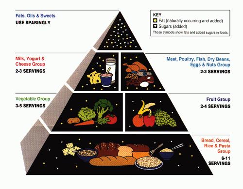 Piramida pravilne prehrane (foto: USDA)