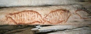 Crteži u spilji Nerja (foto: Prt Scr YouTube)
