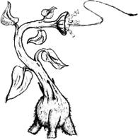 Trifid, ilustracija autora (foto: Wikipedia)