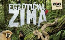 Egzotična zima (foto: Zoološki vrt)
