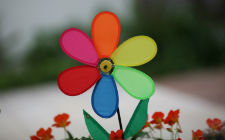 Plastični cvijet (foto: Flickr)