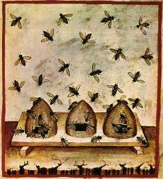 Košnice, srednjovjekovni prikaz (foto: Wikimedia Commons)