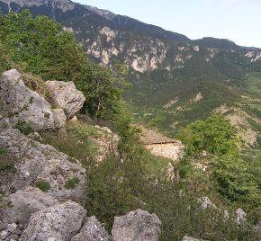 Stanište Campanula aureliana (foto: Sandro Bogdanović)