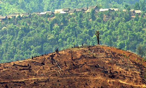 Deforestacija u Burmi (foto:en.wikipedia.org, jidanchaomian)