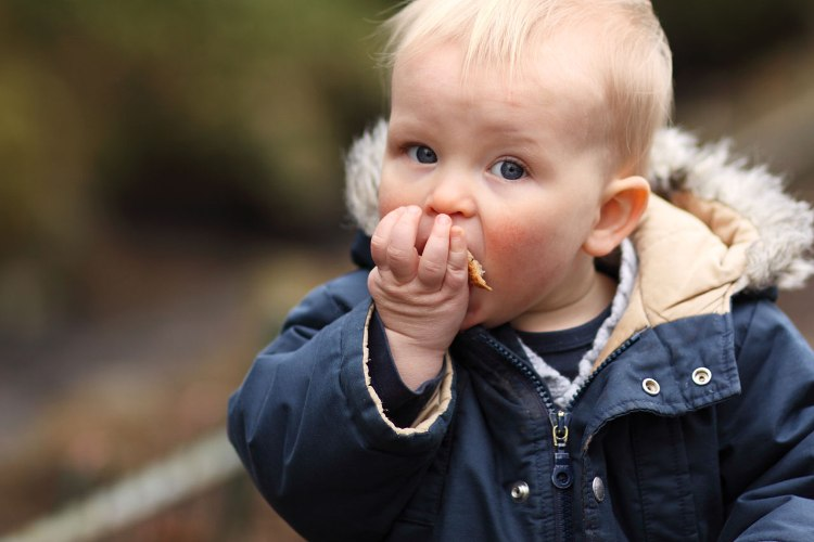Dijete jede(foto:Petr Kratochvil,publicdomainpictures.net)