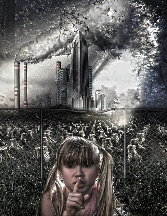 Onečišćenje zraka (foto: pixabay.com)