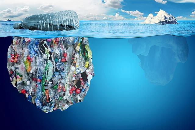 Zagađenje plastikom(foto:pixabay.com)