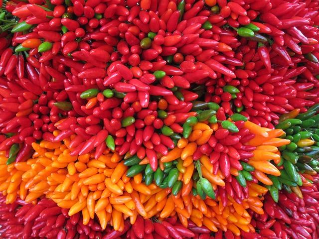 Chilli papričice (foto: maxpixel.freegreatpicture.com)