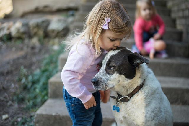 Djeca i ljubimci (foto: flickr.com)