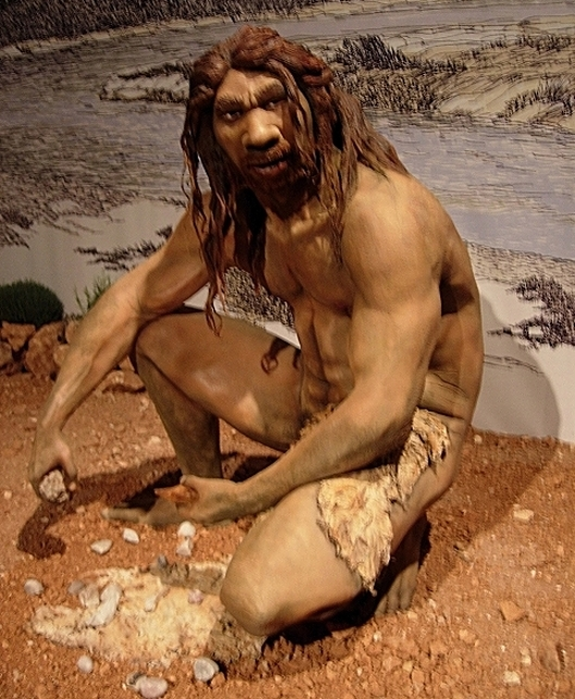 Neandertalac(simple.wikipedia.org)