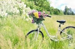 Biciklijada (foto: Pixabay)