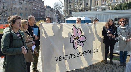 Inicijativa Vratite magnoliju (foto: Zelena akcija)