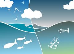 Kvaliteta zraka (foto: Pixabay)