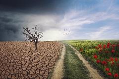 Klimatske promjene (foto: enriquelopezgarre / Pixabay)