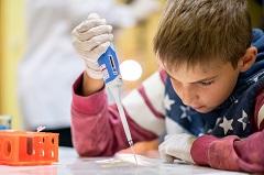STEM (foto: Bioteka)